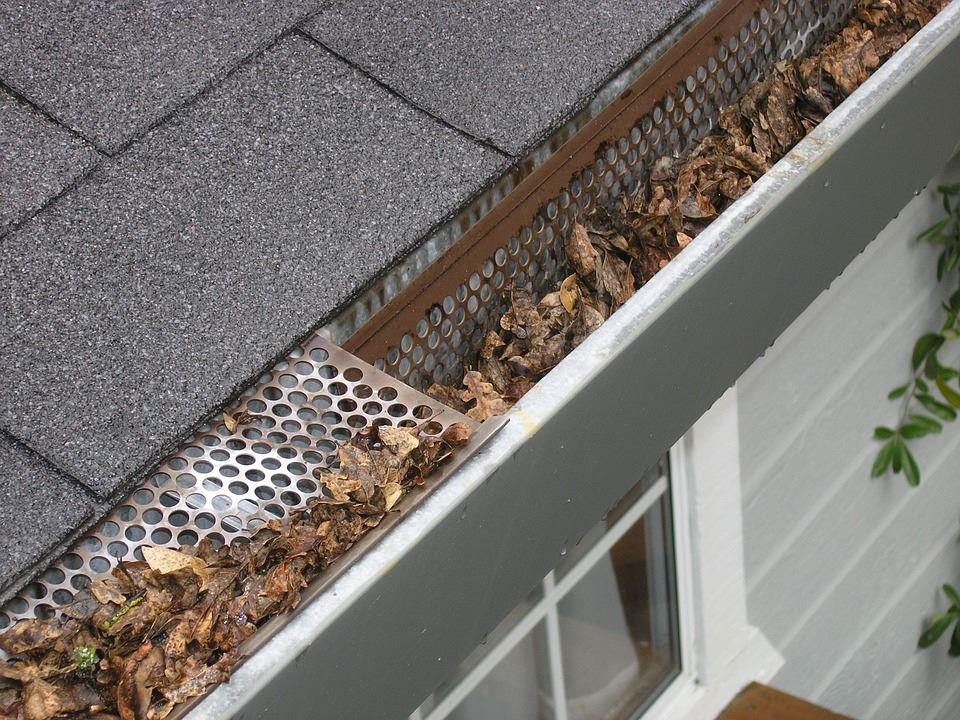 Leaves stuck in home gutters
