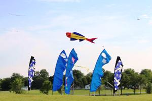 flags and kites.jpg
